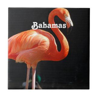 Flamingo Ceramic Tiles