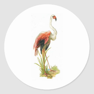 Flamingo Vintage Classic Round Sticker
