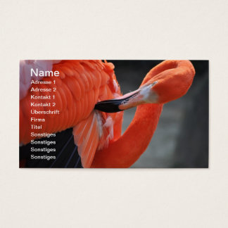 Flamingo - visiting card