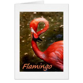 "Flamingo with ""flamingo"" pink text greeting card"