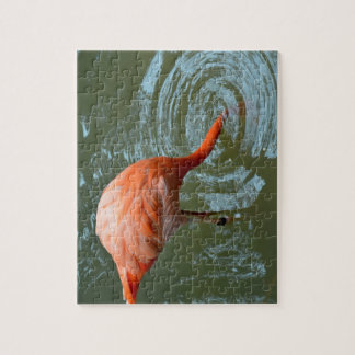flamingo with head in water jigsaw puzzle