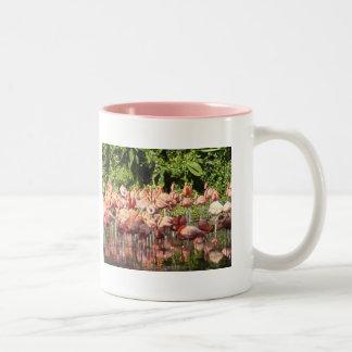 Flamingoes Mugs