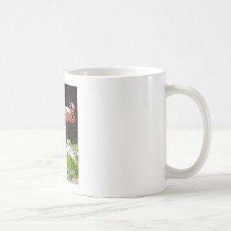 flamingos (2) coffee mug