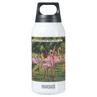 Flamingos at Miami, Florida Insulated Water Bottle