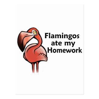 Flamingos ate my Homework Postcard
