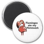 Flamingos ate my Homework Refrigerator Magnet