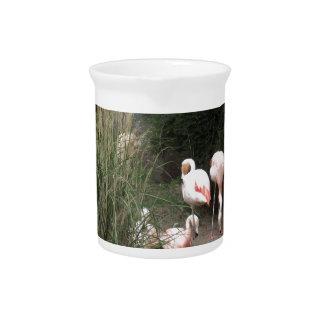 Flamingos Beverage Pitchers