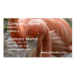 Flamingos Business Card