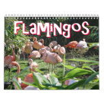 Flamingos Calendar