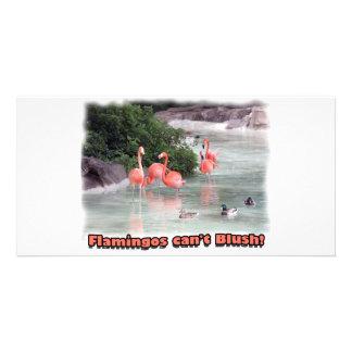 flamingos can't blush! photo card