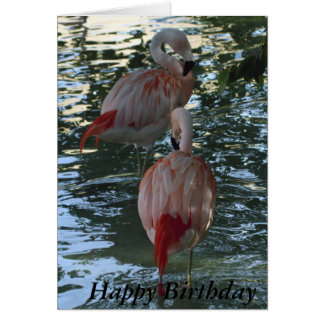 Flamingos Card