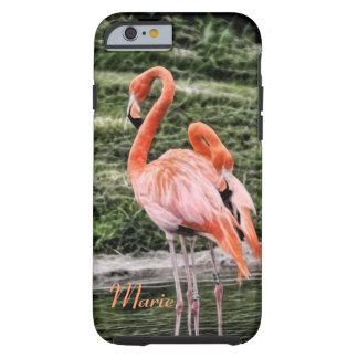 Flamingos Tough iPhone 6 Case