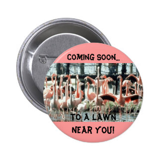 Flamingos, Coming Soon..., To a Lawn Near You! Pin
