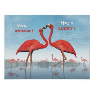 Flamingos courtship : you = awesome, me = lucky poster