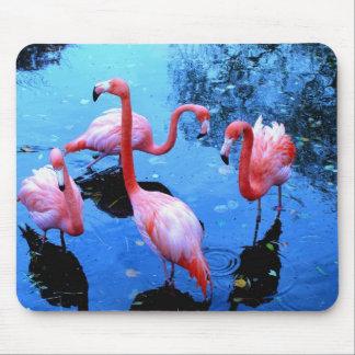 Flamingos dancing mouse pad