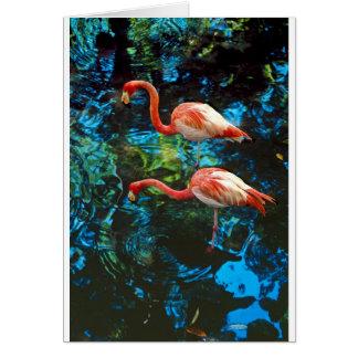 Flamingos FL Card
