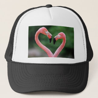 Flamingos hat