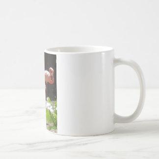 flamingos in Pink Coffee Mug