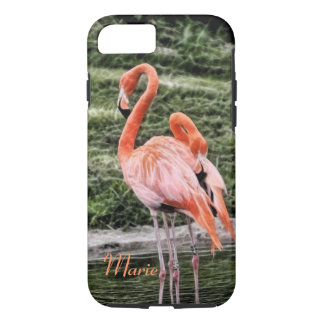 Flamingos iPhone 7 Case