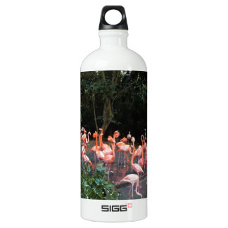 Flamingos near a small lake aluminum water bottle