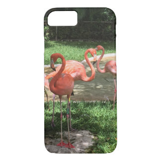 Flamingos on the Riviera Maya in Mexico iPhone 8/7 Case