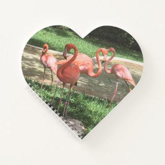 Flamingos on the Riviera Maya in Mexico Notebook