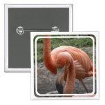 Flamingos Pin