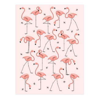 Flamingos Pink postcard