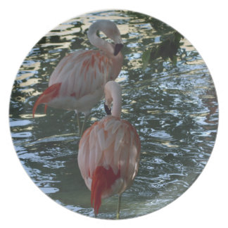 Flamingos Plate