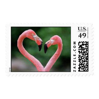 Flamingos postage stamps