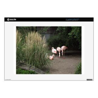 """Flamingos Skin For 15"""" Laptop"""