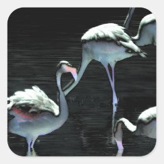 Flamingos Spell Peace Square Sticker