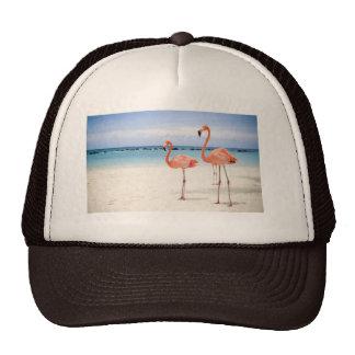 Flamingos Trucker Hat