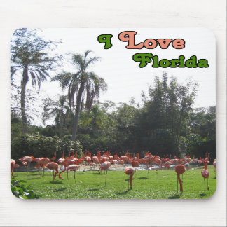 Flamingos with Love Mousepad