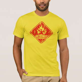 Flammable Extremely dragoon T-Shirt