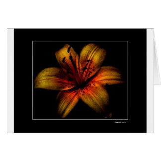 Flamming Passion Flower Greeting Card