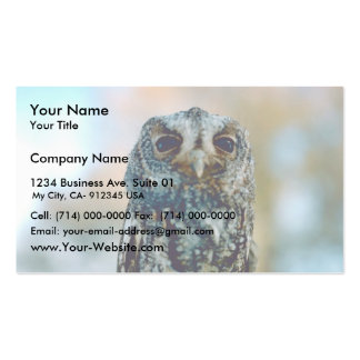 Flammulated owl Double-Sided standard business cards (Pack of 100)