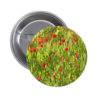 Flanders Poppies Button