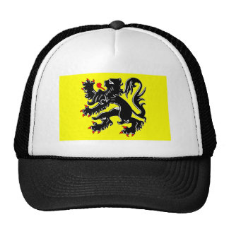 Flanders Region Flag Trucker Hat