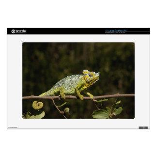 "Flap-neck Chameleon Decal For 15"" Laptop"