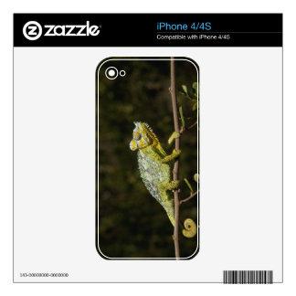 Flap-neck Chameleon Skin For iPhone 4