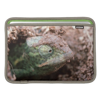 Flap-Necked Chameleon 2 Sleeve For MacBook Air