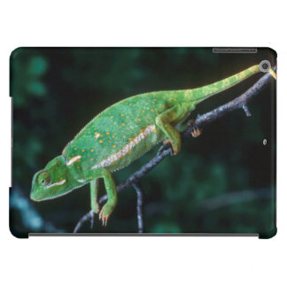 Flap-Necked Chameleon 3 iPad Air Covers