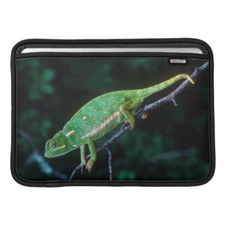 Flap-Necked Chameleon 3 Sleeve For MacBook Air