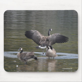 Flapping Canada Goose & River Wildlife Mouse Pad