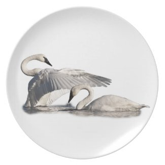 Flapping swan plate