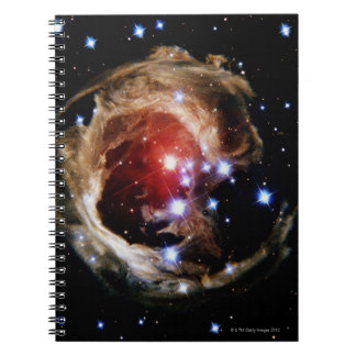 Flashes of Light Notebook