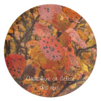 Flashy Fall; Customizable Plate