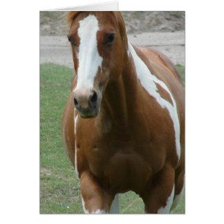 Flashy Paint Horse Card