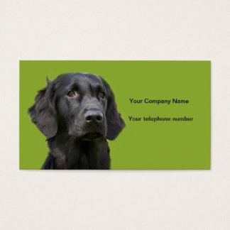 Flat Coated Retriever dog black, beautiful photo Business Card